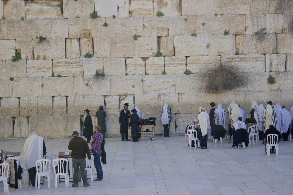 Many people praying at the Western Wall