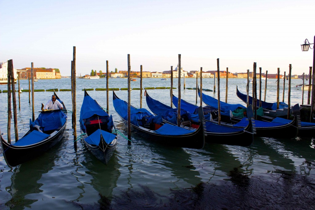 A row of gondolas.